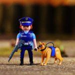 警察犬の仕事や訓練って?向いている犬種や、種類があるって本当?【犬のおまわりさん】